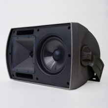 AW-650 Outdoor Speaker - Custom - Black