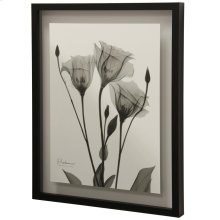 Night Gentian II Transitional Black and White Floral Wall Art