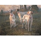 Waiting to Run--English Pointers Limited Edition Print Product Image