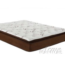 Cicely Chocolate Suede Queen Size Pillow Top Mattress Set