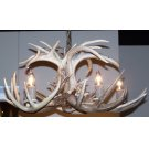 5 Light White Tail Chandelier Product Image