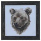 """ANIMAL STUDY (BEAR)"" Product Image"