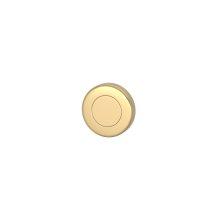 Blank Escutcheons In Polished Brass