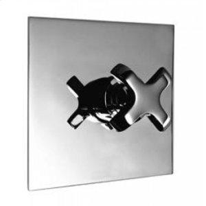 Thermostaic Valve Product Image