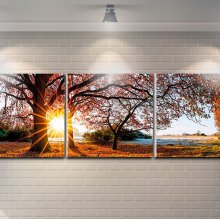 "3 Pieces Printed Art ""forest"" Composition"