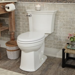 Estate VorMax Right Height Elongated Toilet Product Image