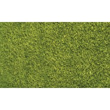 Shaggy rug, Green color