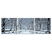 Modrest Winter Trees 3-Panel Photo