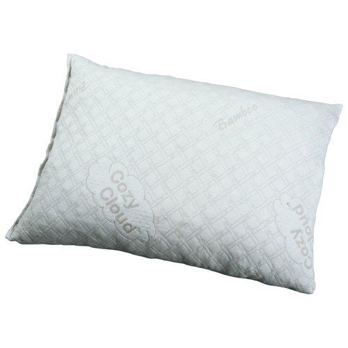 EdenPURE® Pillow