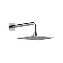 Contemporary Showerhead with Arm