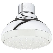 Tempesta 100 Shower Head 1 Spray