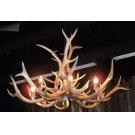 6 Light Elk Chandelier Product Image
