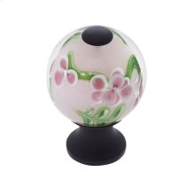 Oil Rubbed Bronze 30 mm Clear Knob