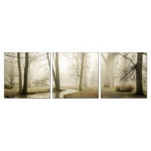 Modrest Mist 3-Panel Photo On Canvas