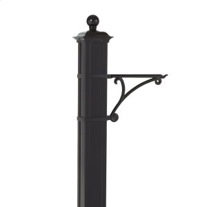 Balmoral Post Plant Hanger - Black Product Image