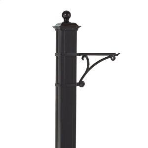 Balmoral Post Plant Hanger - Black Product Image