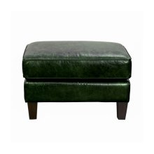 Miles Leather Accent Ottoman in Fescue Green