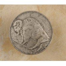 Buffalo Head Nickel