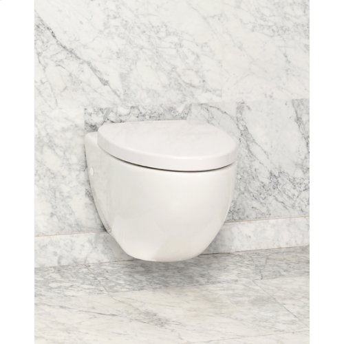 White CLARITY Wallhung Toilet Elongated