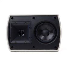 AW-400 Outdoor Speaker - Custom