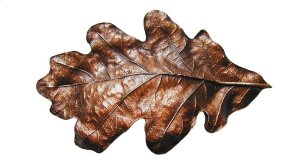 Oak Leaf - Antique Copper Product Image