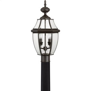 Newbury Outdoor Lantern in Medici Bronze