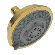 Forever Brass - PVD Multifunction Showerhead