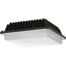 58W LED Low Profile Canopy Fixture