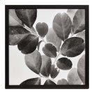 Xray Leaves I Product Image
