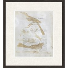 Ornithology III