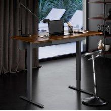6853 Lift Standing Desk in Environmental