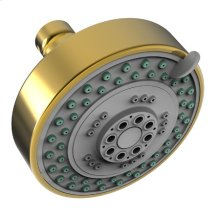 Forever Brass - PVD Multifunction Showerhead