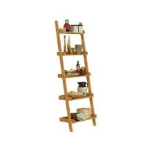 Accessory Ladder