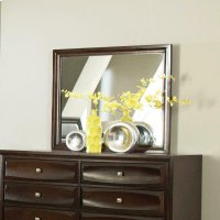 Jaxson Transitional Cappuccino Dresser Mirror Product Image