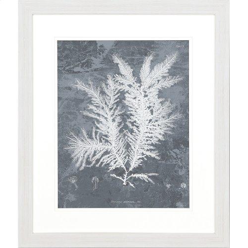 Sea Grass I