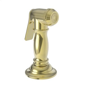 Forever Brass - PVD Kitchen Spray Head Product Image
