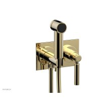 BASIC Wall Mounted Bidet, Lever Handle 130-65 - Polished Brass Uncoated