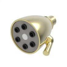 Forever Brass - PVD Single Function Shower Head