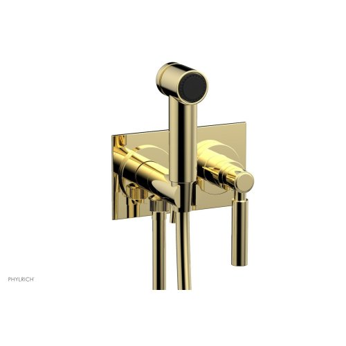 BASIC Wall Mounted Bidet, Lever Handle 130-65 - Polished Brass