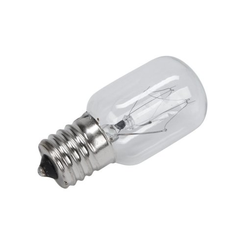 Microwave Light Bulb