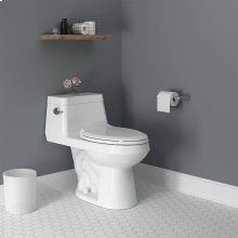 Colony Right Height Elongated One-Piece Toilet With Seat  American Standard - White