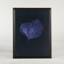 Peinture Dark Blue Coral Art Photo