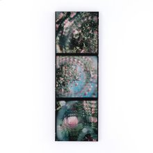 Rose Series By Annie Spratt Framed Metal