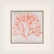 Watercolor Coral IV