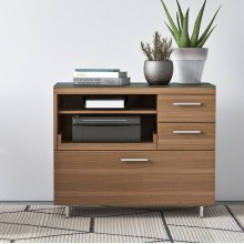 Multifunction Cabinet 6017 in Environmental